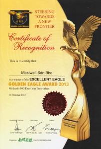 golden eagle 2013 001